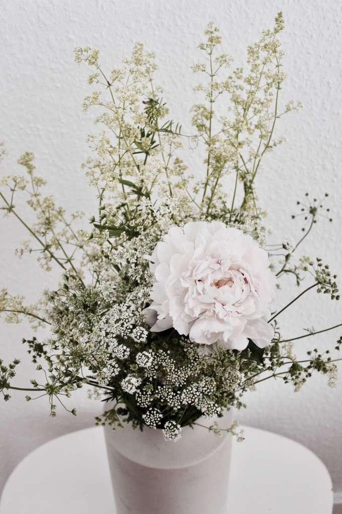 weiße Pfingstrosen ° Blumenfotografie