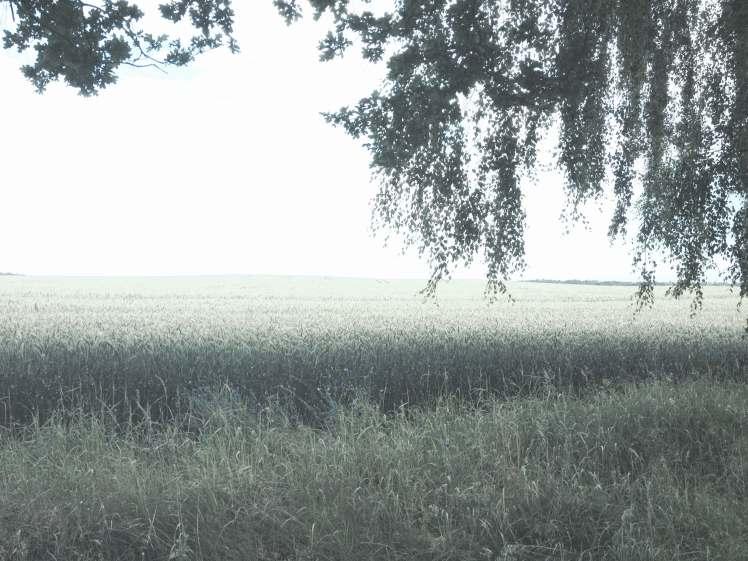 Glaisin und Griese Gegend in Mecklenburg Vorpommern