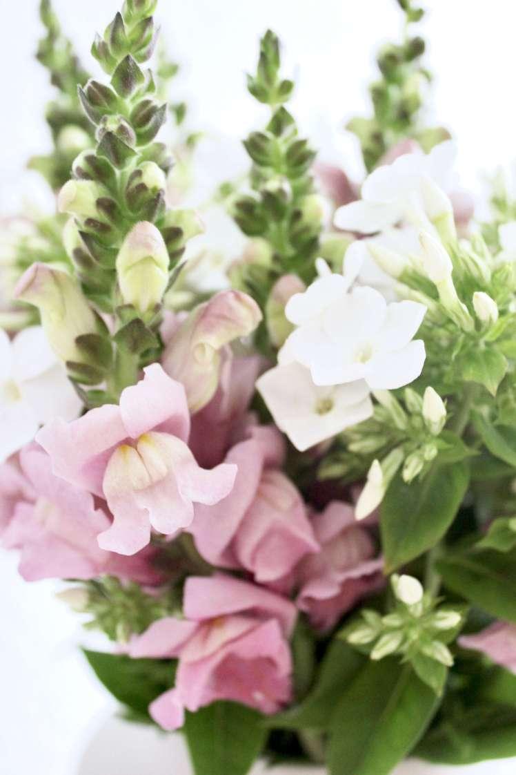 DIY Blumenstrauß aus Rittersporn selber machen