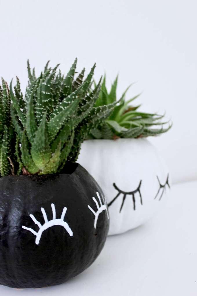 Einfaches Herbst-DIY: Pflanztopf für Sukkulenten aus Kürbis selber machen
