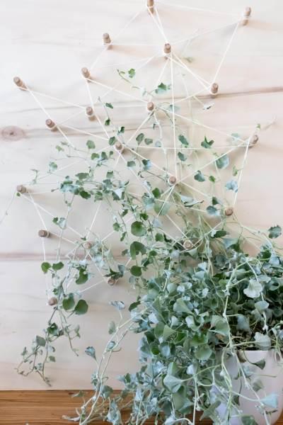DIY Deko Pegboard als Rankhilfe für Hängepflanzen im