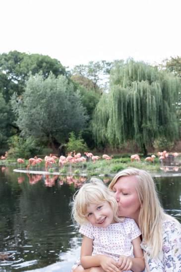 Geschichten vom Wochenende & Gedanken zur Exklusivzeit für Geschwisterkinder